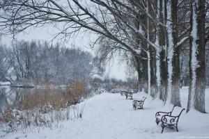 #1 JPEG Winter Scene, www.FreeBigPictures.com